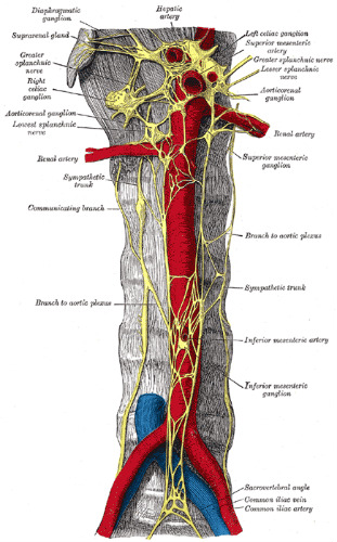 controlling operative and postoperative pain Continuous lumbar plexus block for postoperative pain control after  regional anesthesia for postoperative pain  in the operating.